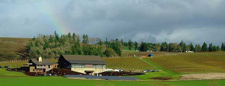 Soléna and Grand Cru Estates winery - Yamhill County, Oregon